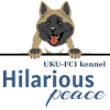 Питомник американской акиты «HILARIOUS PEACE»